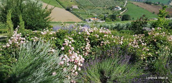 Terre di Ea, la fattoria e l'orto delle meraviglie
